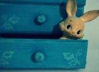 królik zabawka